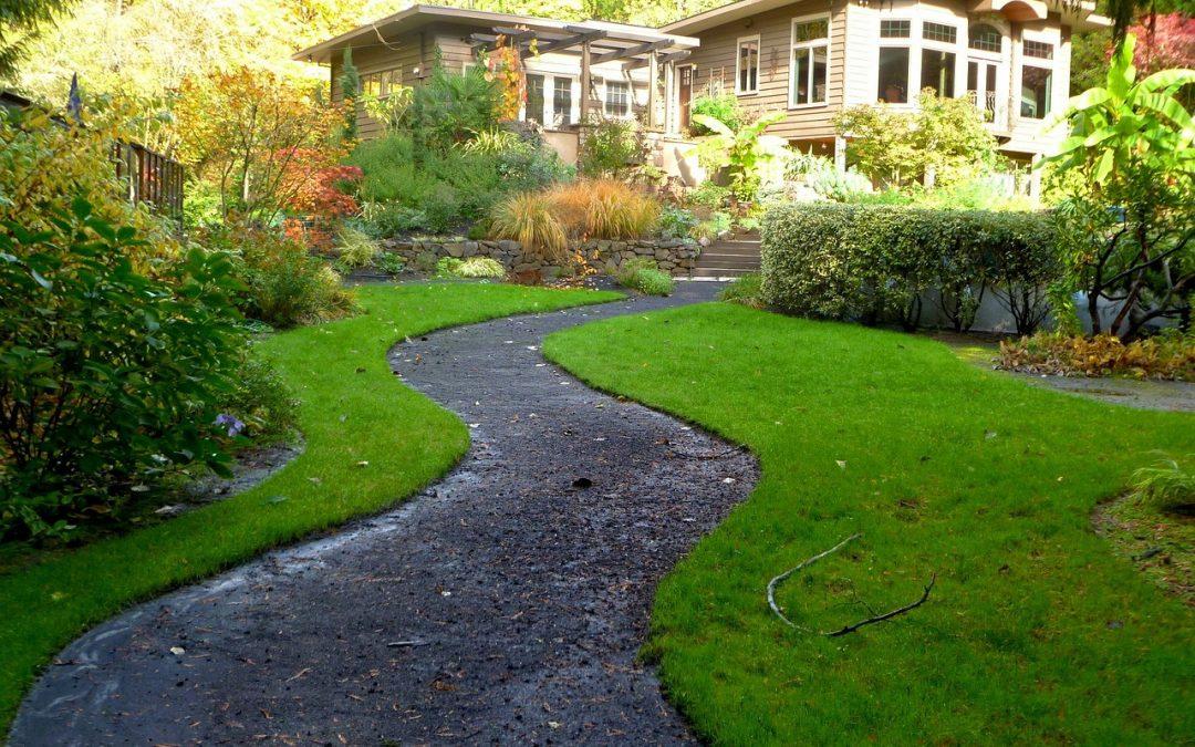 Jakie miejsce wybrać na ogródek?