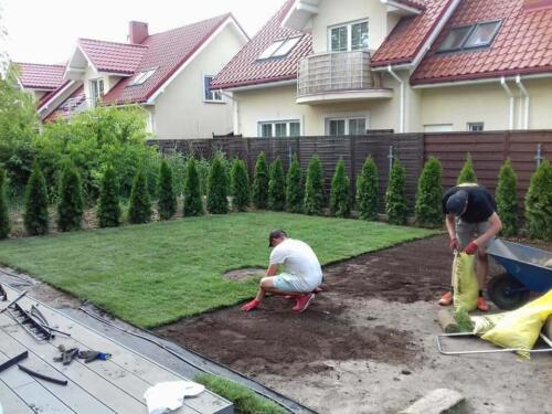 mały ogród3