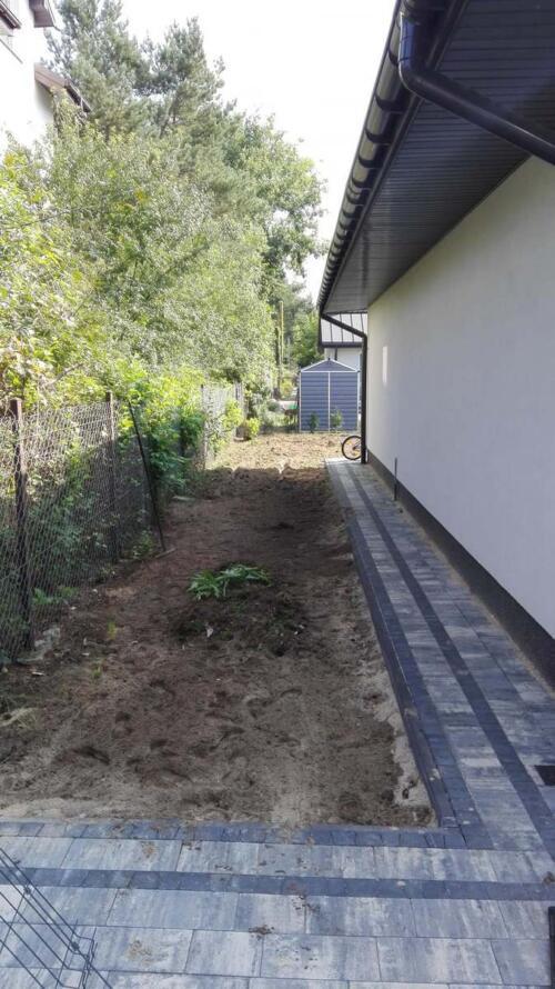 trawnik siany1