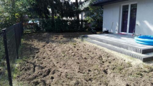 trawnik siany2