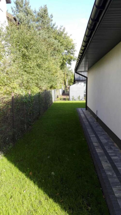 trawnik siany9