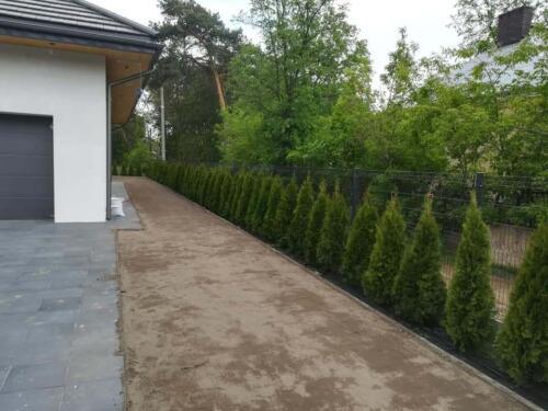 zakładanie ogrodu10