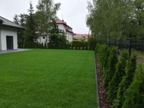 zakładanie ogrodu14
