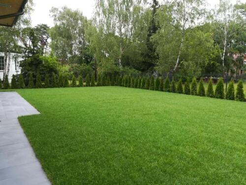 zakładanie ogrodu9